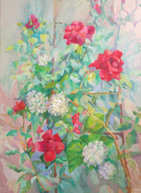 AMO Trandafiri Sucevita
